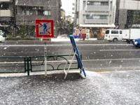 snow0130.jpg